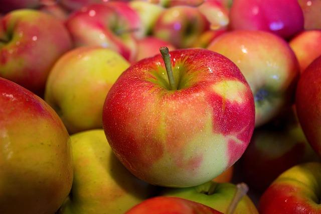 Äpfel von Bauers Hofladen