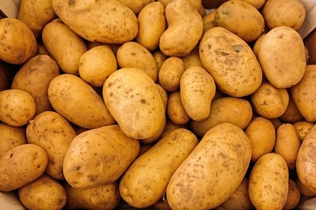 Kartoffeln von Bauers Hofladen